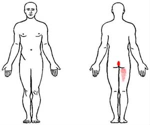 obturator internus trigger point