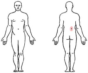 serratus posterior inferior trigger point
